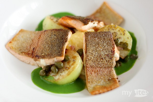 Rainbow Trout with Roasted Kohlrabi, Kohlrabi Sauce, Caper-Vinaigrette and Potato Puree