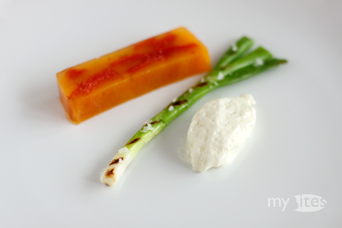 Tomato terrine goat cheese espuma and grilled spring for Tomato terrine